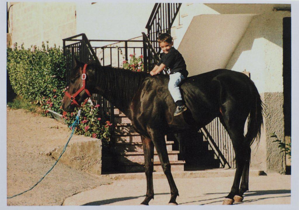 especializados en doma de caballos